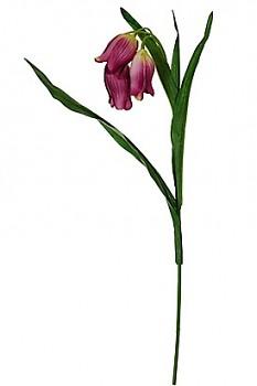 BELL FLOWER 40989LAV LAVENDER