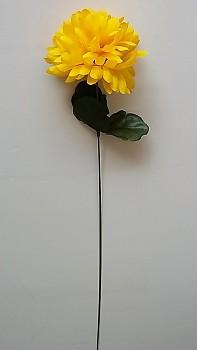 Chryzantema  x1-10/45cm Dark yellow