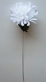 Chryzantema  x1 - 45 cm, květ 13cm