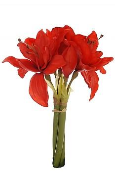 Amarylis 30cm svazek RED