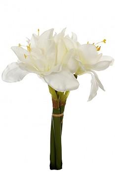 Amarylis 30cm svazek WHITE