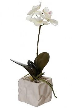 Orchidea v květináči 8x8x31cm CREAM