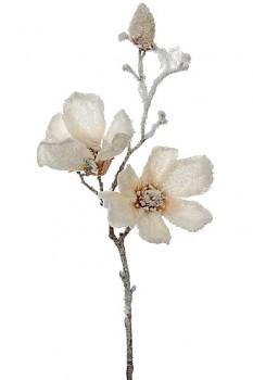 Magnolie zasněžená 50cm x3 CREAM