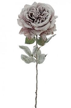 Růže zasněžená 70cm x1 MAUVE